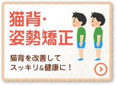 猫背矯正骨盤矯正と美容鍼なら神戸市東灘区のゆかわ鍼灸整骨院へ。神戸市で肩こり、腰痛、頭痛、坐骨神経痛でお悩みの方、自律神経失調症、慢性的な五十肩や腰痛でお悩みの方は神戸市東灘区のゆかわ鍼灸整骨院にご相談ください。神戸市東灘区ゆかわ鍼灸整骨院では、肩こりや頭痛、腰痛、坐骨神経痛、関節痛、交通事故後の不調など、日々の生活で感じる違和感や不調にお悩みの方に対し、痛みの改善だけではなく、原因となる箇所を見極め施術することによって、痛みを解消した後も痛みのでない体作りのサポートをいたします。ゆかわ鍼灸整骨院へお気軽にどうぞ。
